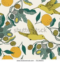Orange, hummingbirds and litchi tree