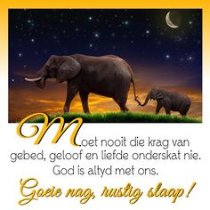 God is altyd met ons. Afrikaanse Quotes, Good Night Blessings, Goeie Nag, Angel Prayers, Good Night Sweet Dreams, Sleep Tight, Day Wishes, Qoutes, Poems