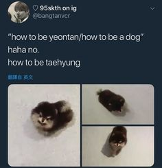 ♡YEONTAN is so cute & adorable♡