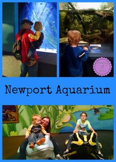 Newport Aquarium-One thing to keep in mind while visiting the aquarium is the vast temperature changes throughout the facility. Canyon Falls and parts of the tunnels are much hotter then the Jellyfish Gallery and food court area. Dressing in slight layers would make for a more comfortable visit.