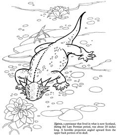 Welcome to Dover Publications - Dinosaurs Discovery Kit Dinosaur Coloring Pages, Truck Coloring Pages, Colouring Pages, Adult Coloring Pages, Coloring Sheets, Coloring Books, Dinasour Party, Dinosaur Discovery, Fun Crafts