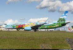 """Alaska """"Spirit of the islands"""" Boeing 737-890 aircraft picture"""