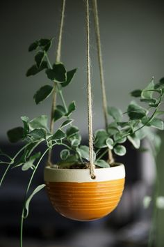 Ceramic Hanging Planter / Function Pottery