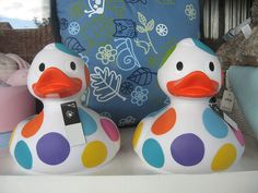 The polka dotted china duck. Display window, Gift Store, Norwood.