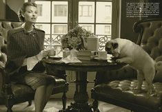 Pugs in Fashion – Vogue Italy