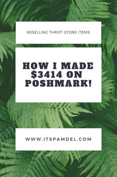How I Made $3414 on Poshmark!!   It's Pam Del   Poshmark tips &  tricks   selling on poshmark   how to sell on poshmark   sell thrift  store items online   how to make money cleaning out your closet   best  place to sell used clothes   reselling online   secrets to selling on  poshmark     poshmark hacks   poshmark thrifted clothes   best stuff to  sell on poshmark Work From Home Moms, Make Money From Home, Make Money Online, Selling Online, Selling On Ebay, Selling Used Clothes Online, Ways To Save Money, How To Make Money, Money Tips