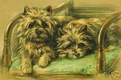 Cairn Terrier 1940'S Art ~ New Note Cards