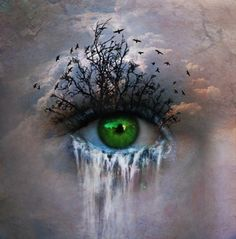 interesting surreal painting of an eye.