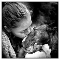Bull-terrier Kezia et Cécile - Chasseneuil-sur-Bonnieure (16) - 15/07/12