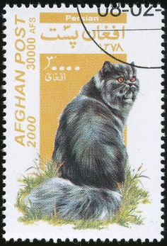 Afghanistan 2000 Cat Stamps - Persian