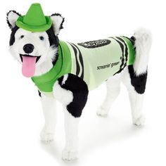 Rasta Imposta Crayola Green Dog Costume Large * You can find more details by visiting the image link.