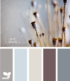 nice palette of gray and beige, with gorgeous blue. I love this color scheme. I think I could find a color to use in every room and hallway in our house! Paint Schemes, Colour Schemes, Color Combos, House Color Schemes, Colour Pallette, Color Palate, Taupe Colour, Color Tones, Color Mix