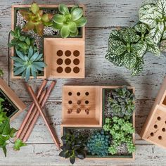 Ukrainian designer Julia Kononenko created a multipurpose desktop object that not only holds your writing utensils, it lets you have a little bit of nature at your workstation. The wooden Eco Pot is a planter that carves out a corner to hold your pens and pencils vertically, while the remaining space can be your own little personal garden
