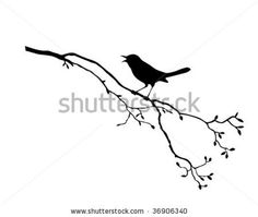 vector silhouette of the bird on branch tree by basel101658, via Shutterstock