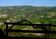 Hills #hills #provinciadicuneo #piemonte #italy