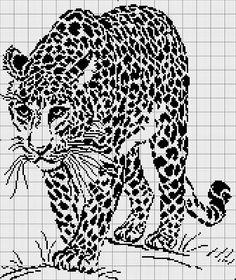 Gallery.ru / Photo # 79 - Monochrome -Cheetah