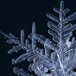Gorgeous Macro Photographs of Snowflakes by Matthias Lenke