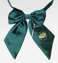Master Guide Cravat/Bow tie Green PF – officialwearSA