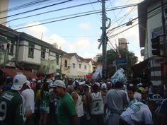 #TORCIDA QUE CANTA & VIBRA #MV #ISOPORCO #CONLABIRRA #PALMEIRAS #MANCHAVERDE #HOOLIGANS #BARRABRAVA #ULTRAS