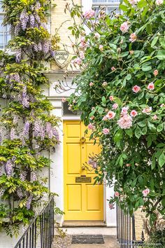 A yellow door surrounded by roses and wisteria on a house in Kensington, London. Yellow Front Doors, London Summer, Yellow Houses, London House, Belle Villa, Entrance Doors, Spring Home, House Front, Ivy House