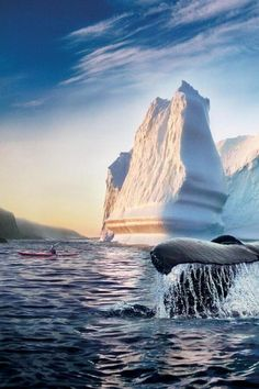 Canada Newfoundland Atlantic Ocean kayaking with whales and icebergs ~ Momentous Newfoundland Canada, Newfoundland And Labrador, Oh The Places You'll Go, Places To Visit, Alaska, Terra Nova, Best Weekend Getaways, Orcas, Parc National