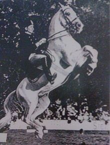 Chief Rider Georg Wahl on Siglavy Brezovica riding the Courbette (1943)  Wikipedia, the free encyclopedia