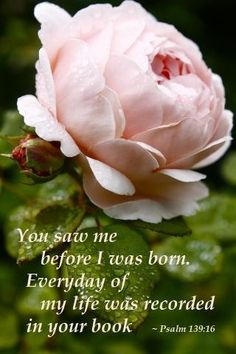 You saw me before I was born. Everyday of my life was recorded in your book. Psalm 139:16 : <3