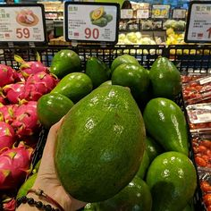 This is the size of avocado in Taiwan Taiwan, Watermelon, Avocado, Lime, Stationery, Fruit, Twitter, Party, Photos