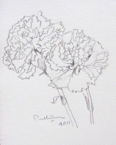 Carnation Sketch from: http://my.opera.com/pabha/blog/