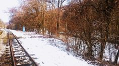 HUNstarsky28 posted a photo:  Taken in Kismaros, a little lovely town in Northern Hungary. Despite the cold weather and snow, I was glad to have taken a brief refreshing walk by the forest, along the rails, which, to my surprise, were still in use. I sure would like to see more of it