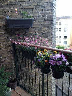 Masser af blomster på den lille altan
