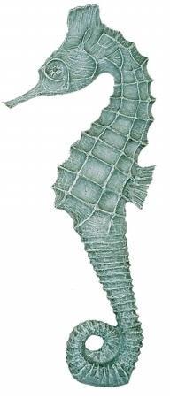 Beautiful Aqua Seahorse Print...