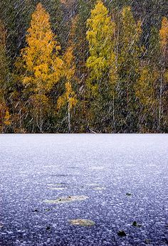 Winter approaches, Kuopio, Finland