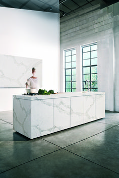 Be inspired by images of Caesarstone in various kitchens applications, from backsplashes to countertops. Caesarstone is tough enough to handle the wear-and-tear risks of high traffic interior spaces and beautiful enough to complement any design scheme.