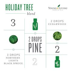 Holiday Tree diffuser blend with Young Living essential oils Myrrh Essential Oil, Essential Oil Diffuser Blends, Essential Oils Christmas, Young Living Diffuser, Living Essentials, Diffuser Recipes, Young Living Essential Oils, Holiday Tree, Living Oils
