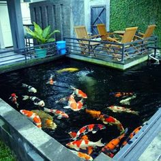 A fish pond can be formed within the landscaped garden as a feature. This may be set up near a gazebo. It is usually sunk in the ground. Fish Ponds Backyard, Fish Pool, Koi Ponds, Diy Garden Fountains, Pond Fountains, Vertikal Garden, Indoor Pond, Fish Pond Gardens, Koi Pond Design