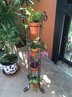 I repurposed my old iron CD rack with small terra cotta pots.