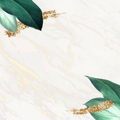 Black Background Wallpaper, Framed Wallpaper, Leaf Background, Cute Wallpaper Backgrounds, Flower Backgrounds, Flower Wallpaper, Background Patterns, Textured Background, Cute Wallpapers