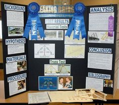 science fair project for 8th grade