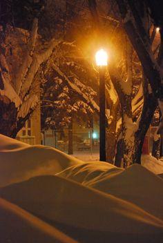 Glistening under the street lamp.