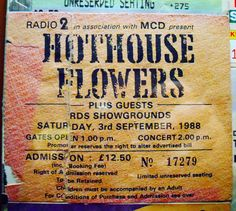 ..30 years ago today. The best of music in the best of weather in my hometown! ...the sun was certainly smiling that day! 😎 @hothouse_flowers . . #craicagusceol #music #dublin #people #concerttickets #lovindublin #rdsdublin #gig #concert #dublin #dublinevents #musician #craic #cairde #greatgigs #liamomaonlai #peterotoole #blues #fiachnaobraonain #instamusic #ireland #visitdublin #rock #hothouseflowers #baileathacliath #soul #alansmusicstash