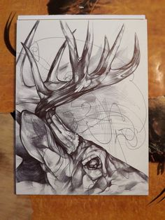 Jason Limberg Commission an Original Pen Portrait of Buck - Stag Deer Drawing