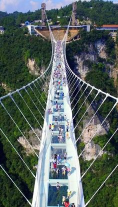 Zhangjiajie Grand Canyon Glass Bridge a 430-metre-long glass bridge has been constructed across a deep canyon in China's Zhangjiajie National Forest Park (+ slideshow). Designed by architect Haim Dotan, the Zhangjiajie Grand Canyon Glass Bridge is believed to be the world's longest and tallest glass pedestrian bridge Glass panels are set into its walkway, giving visitors vertigo-inducing views and photo opportunities of the canyon below