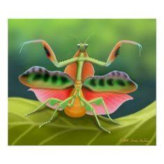 http://rlv.zcache.com/colorful_praying_mantis_bug_poster-re08772b8e57d4699bc811e414b702eb6_kvp_8byvr_512.jpg