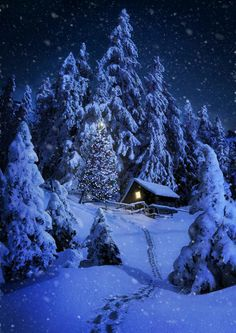My house will look like this when winter is here! Yes, the long hike # .- My house will look like this when winter is here! Yes, the long hike too Winter Szenen, Winter Cabin, Winter Love, Winter Is Here, Winter Night, Snow Pictures, Christmas Scenes, Merry Christmas, Blue Christmas