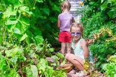 Záhradkári, toto je najlepšia pomôcka pri pestovaní uhoriek: Žiadna chémia na záhrade a dvojnásobná úroda - čaká vás najlepšia sezóna! Couple Photos, Couples, Couple Shots, Couple Photography, Couple, Couple Pictures