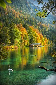 Alpsee, Germany     Edward Noble