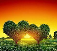 """If I love myself I love you, If I love you I love myself."" ~Rumi"