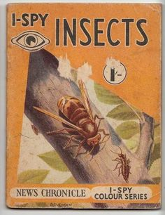 Vintage News Chronicle I-Spy Colour Book Insects I Spy Books, My Books, Vintage Children's Books, Little Books, My Memory, Cover Art, Childhood Memories, Childrens Books, Coloring Books