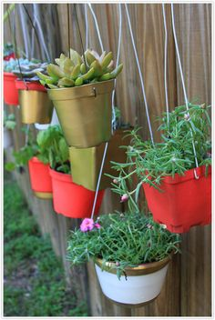 Hanging garden along the fence